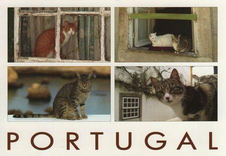 Lisbone (1)