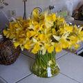 bouquet de jonquilles 2009