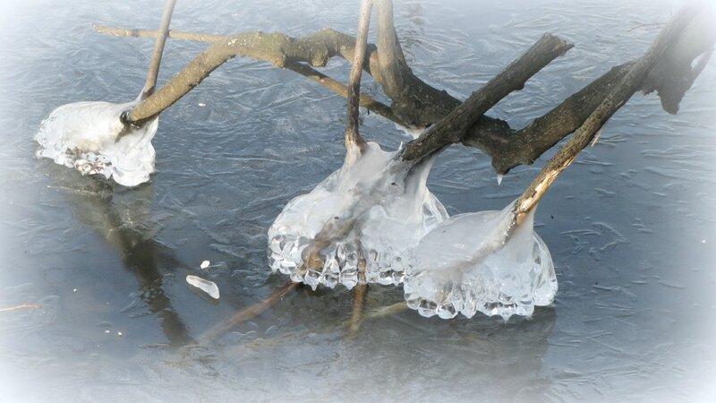 lac gelé-sabots glace