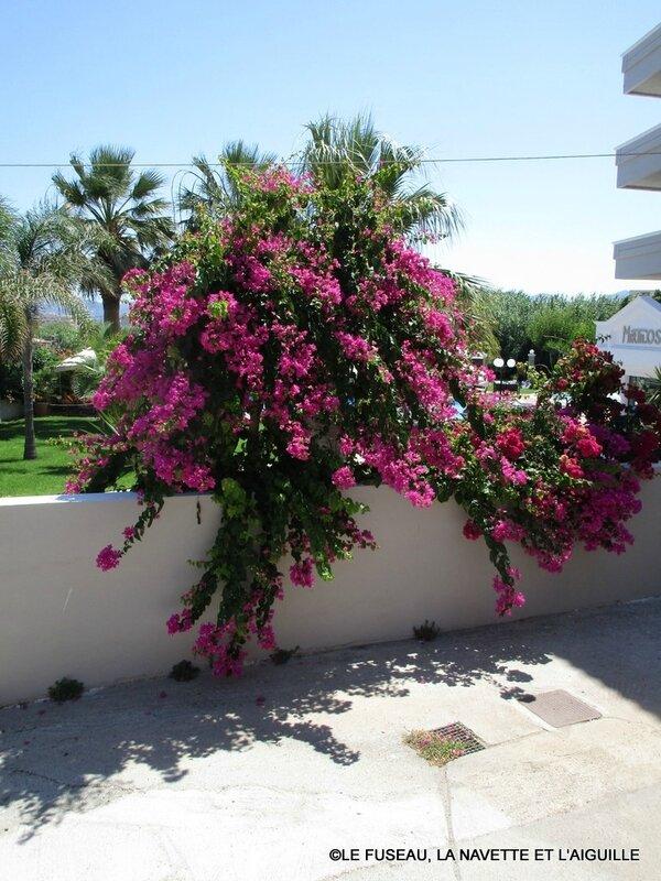 crete-2017-08-04 7