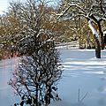 - journée de neige et aujourd'hui très froid -