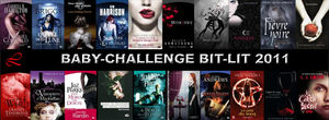 Baby_Challenge_Bit_lit