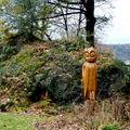 jardin de la chouette à Chamalières