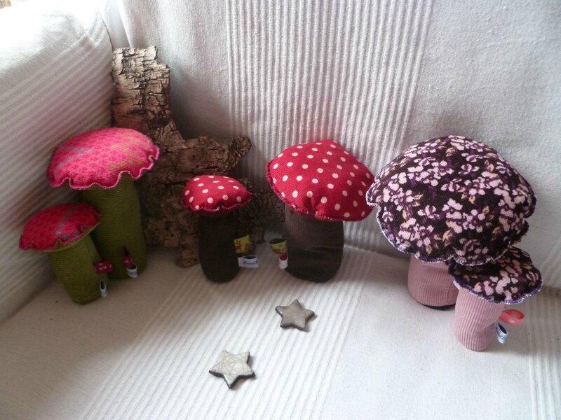 champignons 003