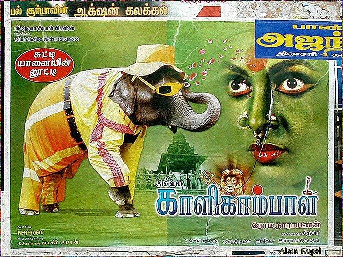 elephantfilm