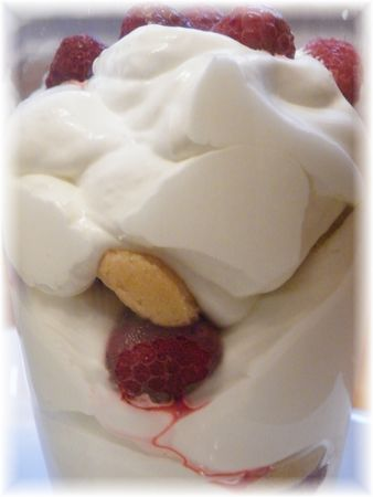 Copie_de_chantilly_framboises_015