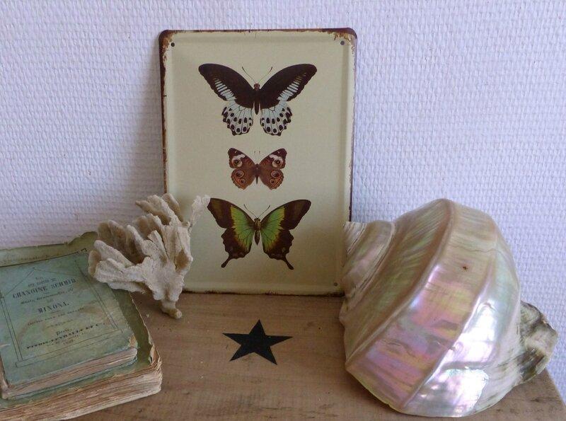 2014-07 Plaques papillons (2)