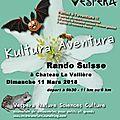 Kultura aventura