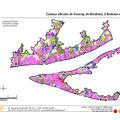 Montlouis et vouvray, l'autre pays du chenin!... (1)