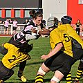 HORNETS_2011-10-16_RCP15_DOM_BIC_PICT0183