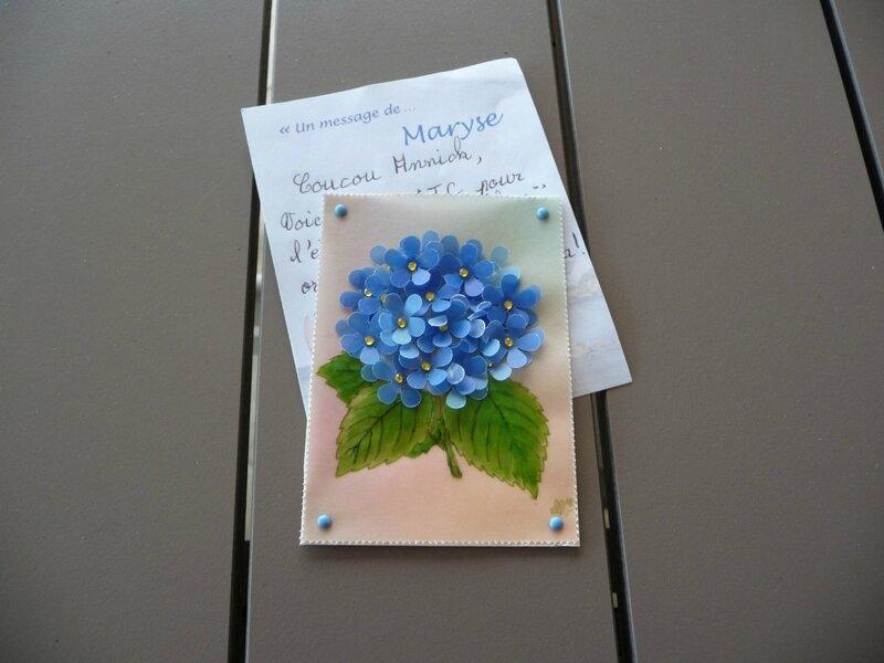 Fleur bleue MT
