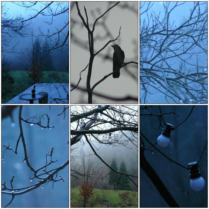 photos des matins
