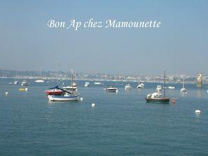 Saint Malo juillet 2013 029