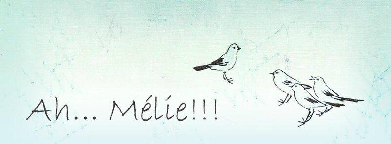 bannière blog oiseaux