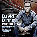 David Binney - 2011 - Barefooted Town (Criss Cross)