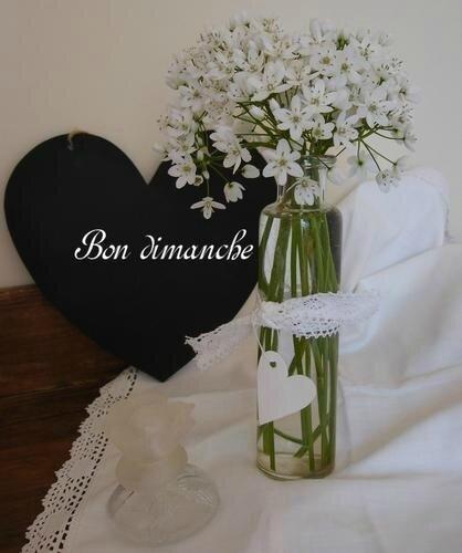 fleurs-blanches-bon-dimanche-1