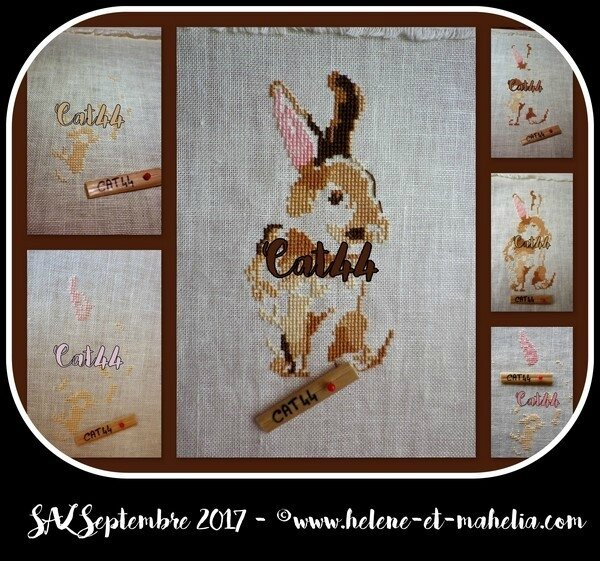 cat44_salsept17_col3