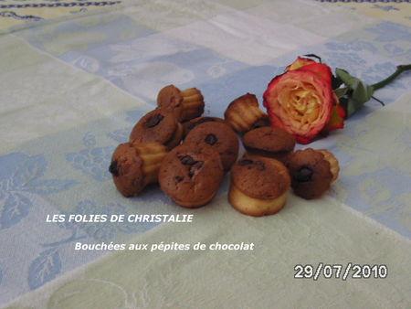 Bouch_es_aux_p_pites_de_chocolat__2