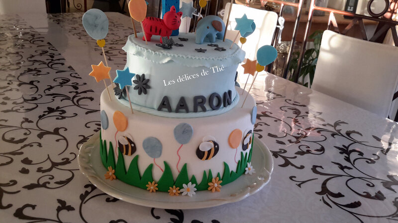 Anniv Aaron 1 an Nov 2017 (19)