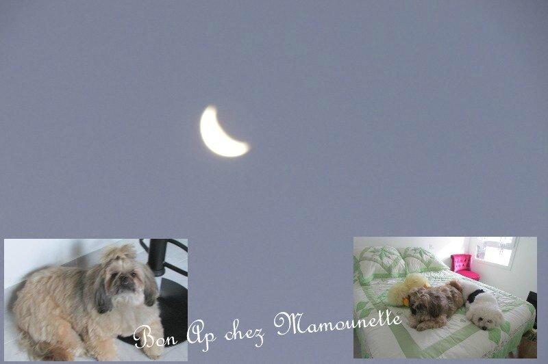 Isis Handy dans l'appart et la lune