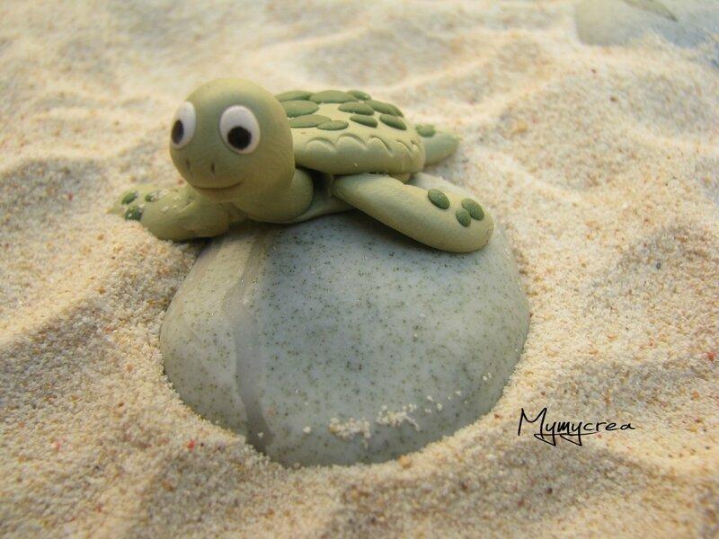 tortue ssur la plage2