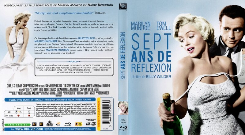 syi-dvd-france-jaquette-3