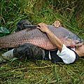 Un pêcheur amoureux