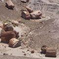 Petrified Desert( RolandB)