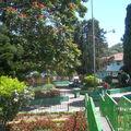 Boquete parc Domingo Médica ou parc central