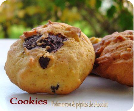 cookies_potimarron__scrap1_