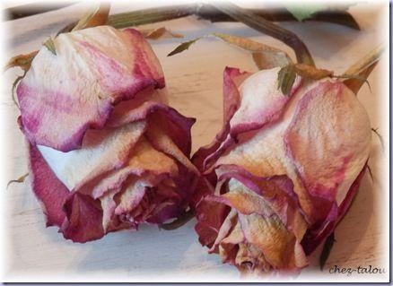 bourse fleurs