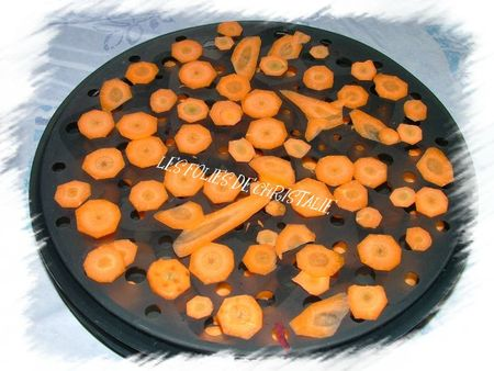 Chips carottes 1