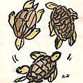 Soupe à la tortue