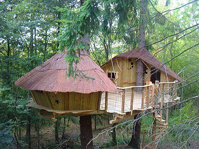 cabane-castor