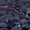 le parapluie de strasbourg
