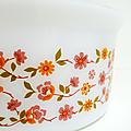 Vaisselle vintage ... saladier arcopal * modèle scania