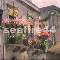 sicile_taormina_rue fleurie_027