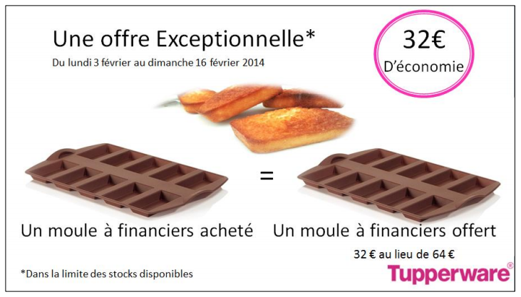 Moule à financier tupperware