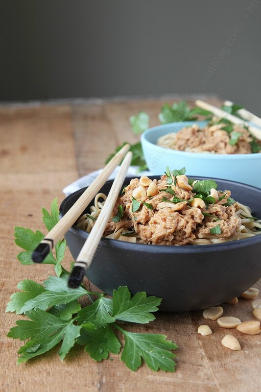 Effiloche poulet sauce thaie cacahuete 003 LE MIAM MIAM BLOG