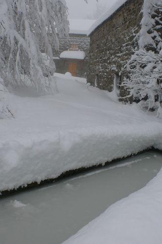 2008 12 15 Le bassin et la neige