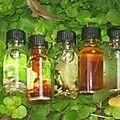 Les parfums magiques du maitre gbeto