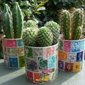 Recyclage Bote Conserve: minis cache-pots 'timbrs