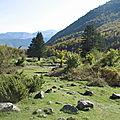 Plateau de Sanchèse, automne (64)