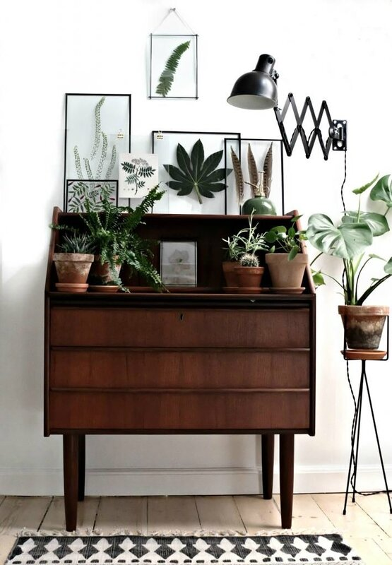 commode-scandinave-vintage-midcentury-modern-pieds-fuseles-plantes-deco