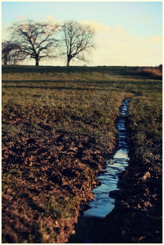 Ruisseau_small