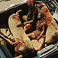 The devil's rejects de rob zombie - 2005