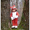Rencontre d'un joli petit renard