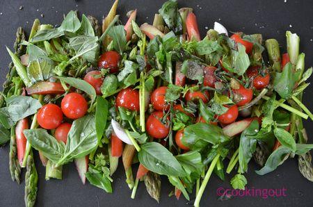 Asperges,-rhubarbe-et-tomates--crues