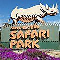 Rhinocéros blanc du nord : le parc zoologique de san diego garde l'espoir
