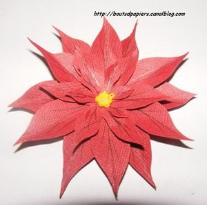 2009_11_27_Carte_poinsettia_015__3_